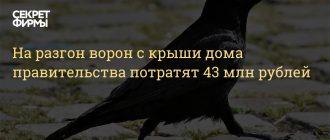 Для разгона птиц на Доме правительства РФ выделено 42,6 млн рублей