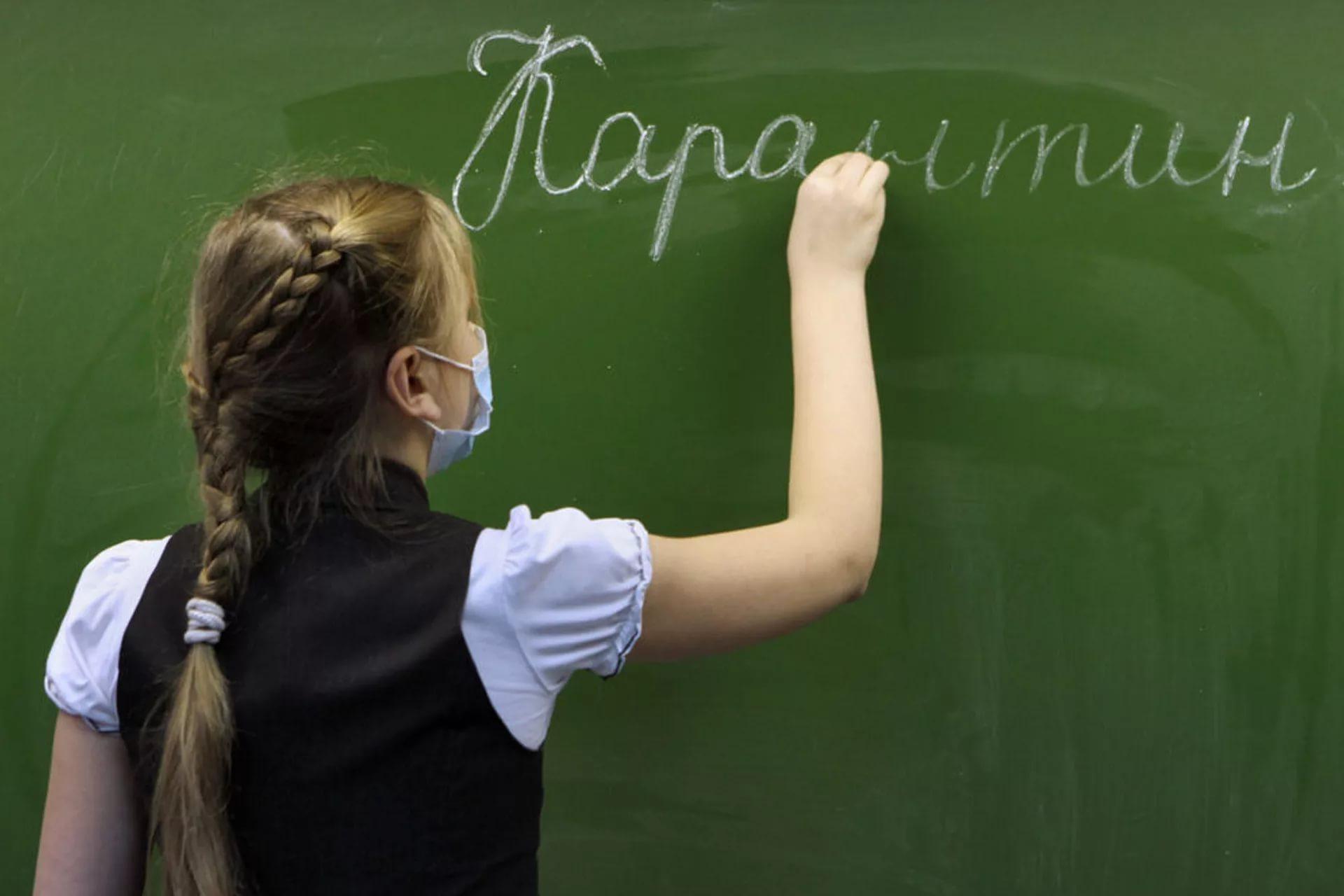 Школы в России не будут переводиться на удалёнку