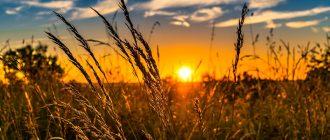 Синоптик пообещал россиянам персиковое лето. Хорошо ли это?