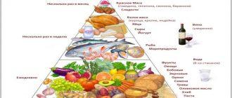 Средиземноморская диета может сохранить остроту стареющего мозга