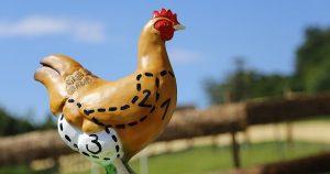 Эту часть курицы нельзя есть ни в коем случае! Она ядовитая!